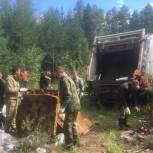 В лесу между селом Порошино и поселком Сидоровка ликвидировали свалку