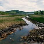 На очистку русел рек, внутренних вод и территориального моря России до 1 августа выделят 20 млрд рублей