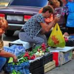 Депутаты городской Думы обсудили проблему стихийной торговли на рязанских улицах