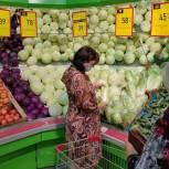 Сторонники партии «Единая Россия» провели мониторинг цен на продукты «борщевого набора» в Железнодорожном округе