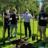 Молодогвардейцы Замоскворечья помогают озеленить район