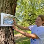 День эколога в Южном округе отметили масштабным субботником на «Борисовских прудах»