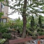 Евгений Попов: «В ходе экологических акций было посажено свыше 420 деревьев»