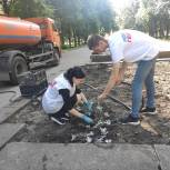 Орловские волонтёры посадили цветы на Аллее Героев