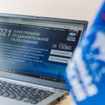 Определены лидеры предварительного голосования в Московской области