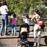 По инициативе «Единой России» в Еврейской автономии расширили поддержку многодетных