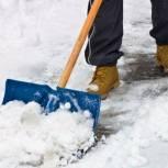 Волонтеры Сибири и Поволжья чистят от снега дворы пенсионеров и инвалидов