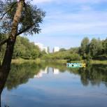 Каким станет парк отдыха в Заднепровье? В Смоленске состоялись общественные обсуждения