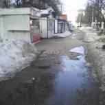 Единороссы инициируют создание нового сквера в Кировском районе Самары