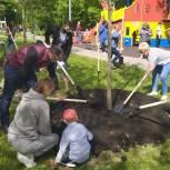 Единороссы помогли жителям района  Строгино озеленить сквер