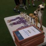 Единороссы района Кунцево организовали футбольный турнир «Легенды дворового футбола»