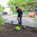 Активисты «Единой России» приняли участие в озеленении территории детского сада в Иванове