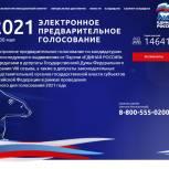 Депутаты Госдумы и областной парламентарий победили в электронном предварительном голосовании «Единой России»