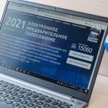 В Мурманской области продолжается электронное предварительное голосование