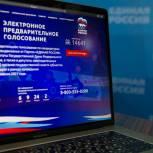 Губернаторы-секретари реготделений: активность избирателей говорит о легитимности предварительного голосования «Единой России»