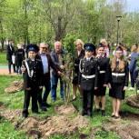 В центре Москвы единороссы озеленили сквер Девичьего поля