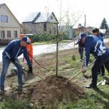 Акция «Сад Памяти»: ишимцы посадили 100 яблонь на улицах города