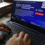 Участники предварительного голосования в Томске отметили доступность процедуры