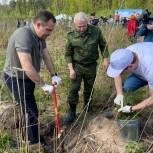 Игорь Брынцалов возглавил эколого-патриотическую акцию «Лес Победы» в Балашихе