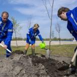 Инна Святенко: Район Капотня становится одним из самых зеленых мест Москвы благодаря городским проектам