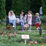 Совет Федерации единогласно одобрил закон «Единой России» о новых льготах для семей с детьми