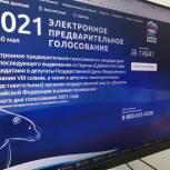 В Тамбовской области в предварительном голосовании приняли участие больше 50 процентов зарегистрированных пользователей