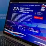 В Мурманской области свои голоса за кандидатов отдали 18% избирателей