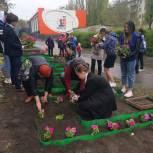 У липецкой школы высадили цветы в виде слова «Победа»