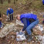 Лосино-Петровские единороссы ликвидировали несанкционированную свалку в лесу