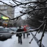 Кто и как должен убирать наледь и снег во дворах? Кто ответит, если гражданин получил из-за этого травму? Разъясняет Александр Козлов