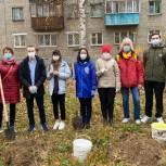 Активисты «Единой России» высадили кедры у школ Нижнего Новгорода