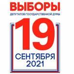 Опубликованы официальные данные по явке избирателей на 18-00 заключительного дня голосования