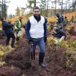 Александр Якубовский: Мы вылечим раны, которые человек наносит природе