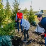 Ямал присоединился к всероссийской акции «Сохраним лес»