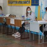 Промежуточная явка на выборах в ЕАО превысила 12%