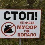 Законопроект об усилении ответственности за незаконный сброс мусора внесен в Госдуму