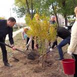 Активисты и ветераны Металлургического района высадили деревья на «Бульваре металлургов»