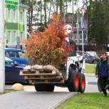 Сторонники партии в Красногорске помогли жителям города