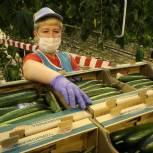 Нижегородская область получит еще 23,6 млн рублей на поддержку фермеров