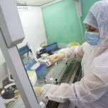 Кабмин одобрил выделение 2 млрд рублей на создание «санитарного щита»