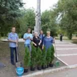 Активисты партии приняли участие в акции «Лес Победы»