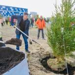 Активисты единого волонтерского штаба Нового Уренгоя присоединились ко Всероссийской акции «Сохраним лес»
