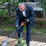 «Сохраним лес»: в центре Архангельска состоялась посадка деревьев