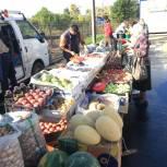 Продовольственная ярмарка открылась в поселке Смидович во второй день всероссийского голосования