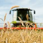 По инициативе депутатов «Единой России» жители Амурской области смогут получать участки под разные виды сельхоздеятельности