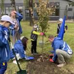 Химкинские единороссы приняли участие в экологической акции «Наш лес. Посади свое дерево!»