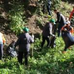 Железнодорожный район присоединился к субботнику в рамках экологической акции «Зеленая Россия»