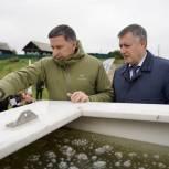 100 тысяч мальков сазана выпустили в Братское водохранилище
