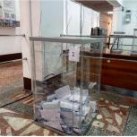 Трехдневное голосование завершилось в Республике Алтай
