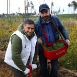 Александр Ведерников принял участие во Всероссийской акции «Сохраним лес»